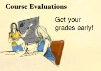 Online Evaluations